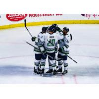 Florida Everblades celebrate a goal against the Utah Grizzlies