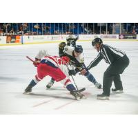 Tulsa Oilers face off with the Allen Americans