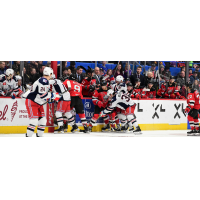 Binghamton Devils brawl with the Hartford Wolf Pack