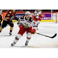 Grand Rapids Griffins forward Tyler Spezia
