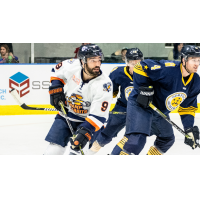 Greenville Swamp Rabbits forward Mason Baptista vs. the Norfolk Admirals