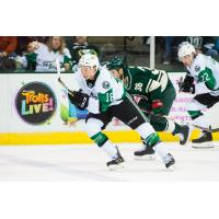 Texas Stars forward Jason Robertson