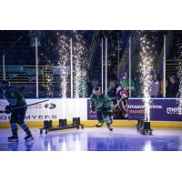 Florida Everblades pregame introductions