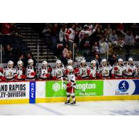 Grand Rapids Griffins left wing Taro Hirose and the Griffins bench