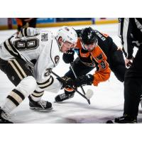 Lehigh Valley Phantoms center Cal O'Reilly (right) faces off with the Hershey Bears