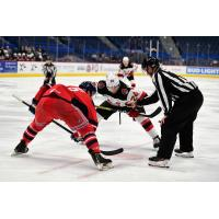 Binghamton Devils right wing Ludvig Larsson (right) faces off against the Hartford Wolf Pack