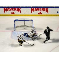 Griffen Molino of the Utah Grizzlies (right) scores against the Newfoundland Growlers