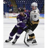 Reading Royals forward Ralph Cuddemi vs. the Newfoundland Growlers