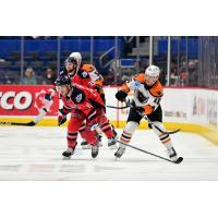 Lehigh Valley Phantoms forward Maksim Sushko (right) vs. the Hartford Wolf Pack