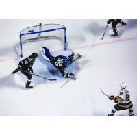 Utah Grizzlies goaltender Martin Ouellette makes a sprawling save against the Newfoundland Growlers