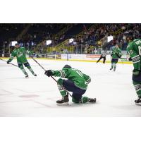 Zach Magwood of the Florida Everblades celebrates a goal