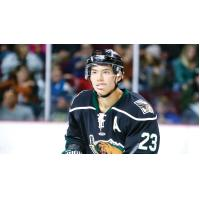 Tim McGauley of the Utah Grizzlies
