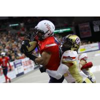 Sioux Falls Storm wide receiver Brandon Sheperd makes a catch against the Quad City Steamwheelers
