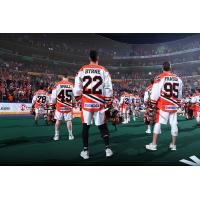GEICO patch on National Lacrosse League away jerseys