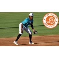 Long Island Ducks infielder Vladimir Frias