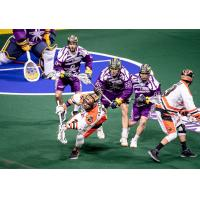 The Georgia Swarm defense sets up against the Buffalo Bandits