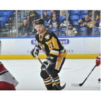 Forward Oula Palve with the Wilkes-Barre/Scranton Penguins