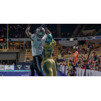 Defensive back Ken Walton II with the Carolina Cobras