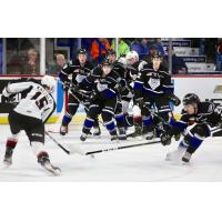 Vancouver Giants centre Holden Katzalay takes aim against the Victoria Royals