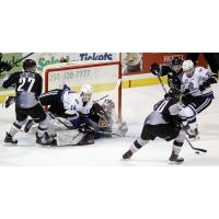Vancouver Giants goaltender Trent Miner Clogs the goal against the Victoria Royals