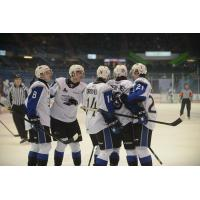 Saint John Sea Dogs huddle up after a goal against the Gatineau Olympiques