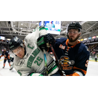 Greenville Swamp Rabbits battle the Florida Everblades
