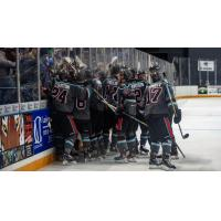 Columbus River Dragons celebrate in front of the fans