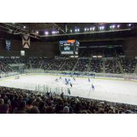 Sellout crowd at Bay Center, home of the Pensacola Ice Flyers