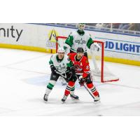 Texas Stars vs. the Rockford IceHogs
