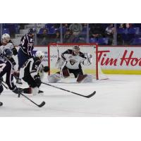 Vancouver Giants goaltender Trent Miner snags a puck vs. the Tri-City Americans