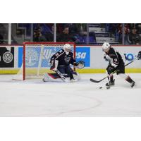 Vancouver Giants left wing Jackson Shepard (right) skates in against the Tri-City Americans