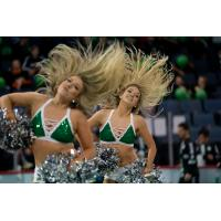 Dallas Sidekicks Dancers