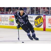 Utah Grizzlies forward Tim McGauley