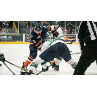 Greenville Swamp Rabbits defenseman Robert Powers faces off with the Florida Everblades