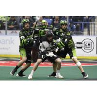 Saskatchewan Rush team up on the Colorado Mammoth