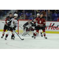 Vancouver Giants goaltender Trent Miner vs. the Red Deer Rebels