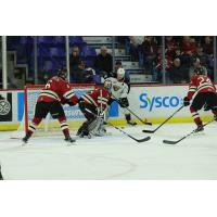 Vancouver Giants centre Milos Roman tests the Red Deer Rebels defense