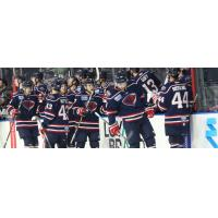 South Carolina Stingrays exchange congratulations along the bench