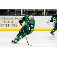 Texas Stars left wing Jason Robertson