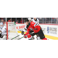 Binghamton Devils center Michael McLeod vs. the Hershey Bears