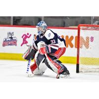 Hartford Wolf Pack goaltender Tom McCollum