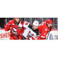 Binghamton Devils left wing Brandon Gignac vs. the Charlotte Checkers