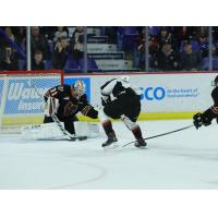 Vancouver Giants forward Justin Sourdif completes his hat trick against the Calgary Hitmen