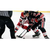 Port Huron Prowlers face off with the Carolina Thunderbirds