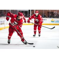 Forward Janne Kuokkanen with the Charlotte Checkers