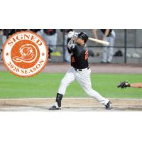 Long Island Ducks outfielder Daniel Fields