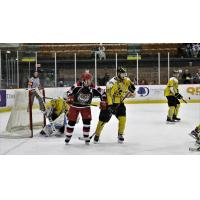 Port Huron Prowlers vs. the Battle Creek Rumble Bees