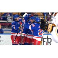 Kitchener Rangers celebrate a goal against the Sarnia Sting