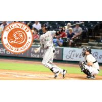Long Island Ducks outfielder D'Arby Myers