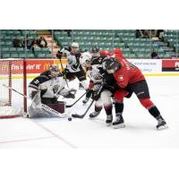 Vancouver Giants goaltender Trent Miner and defenceman Alex Kannok Leipert defend against the Prince George Cougars